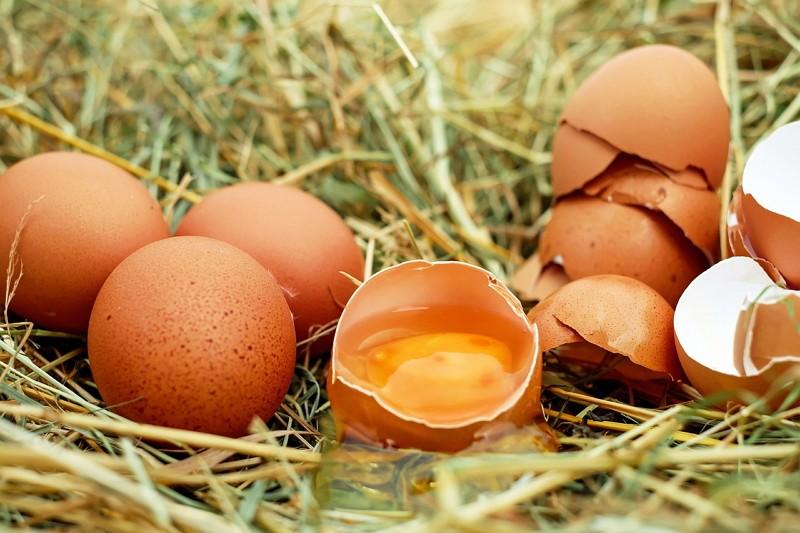 Eggs (Photo/Pixabay)