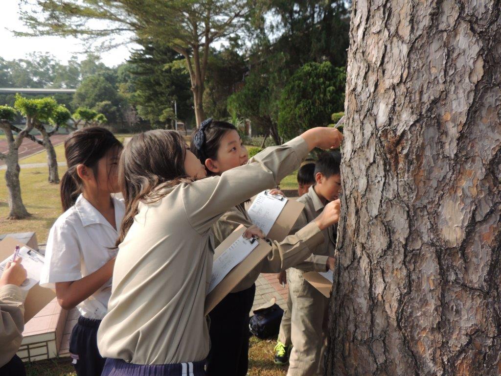南投名崗國小-啟發學生觀察學校與家鄉的生物多樣性。(照片來源:特生中心提供)