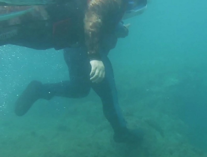 Diver stomping on sea turtle. (CGA image)
