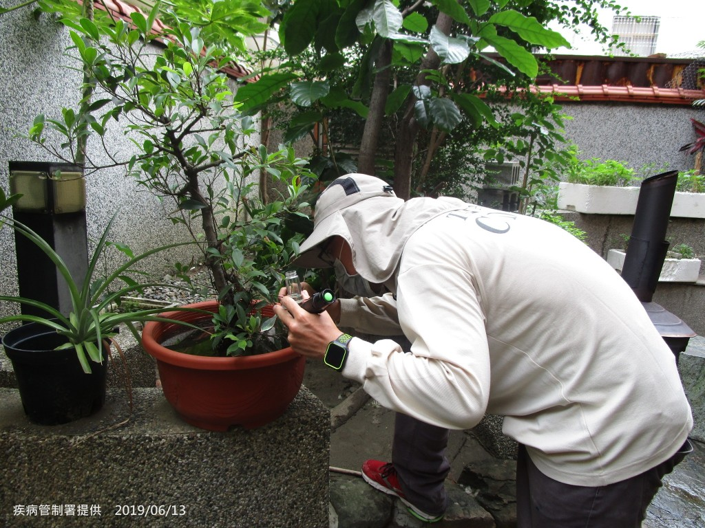 疾管署防疫人員仔細檢視盆栽是否有病媒蚊孳生。(圖/疾管署)