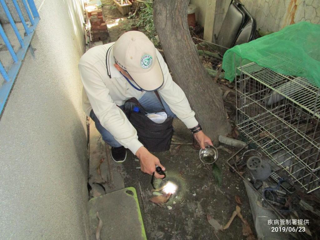 疾管署防疫人員探查金獅湖市場隱藏性孳生源。(疾管署提供)