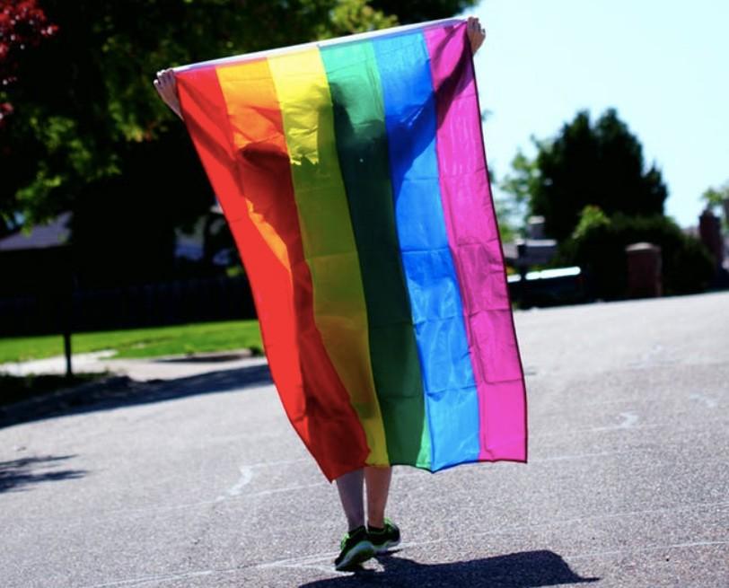 日茨城縣同性伴侶將合法(圖/pexels)