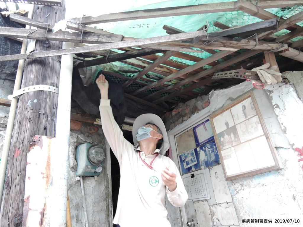 疾管署防疫人員於台南市中西區開山里查核孳生源。(圖/疾管署)