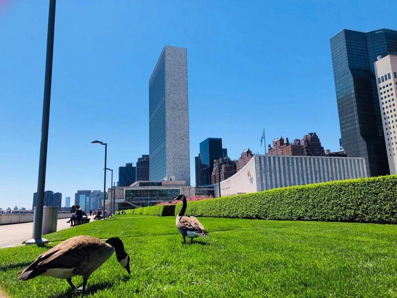 UN headquarters in New York (UN Facebook photo)