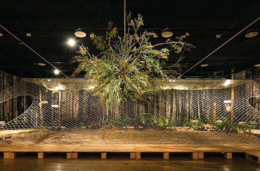 文總推出展覽打造城市中的森林秘境(圖/文總)