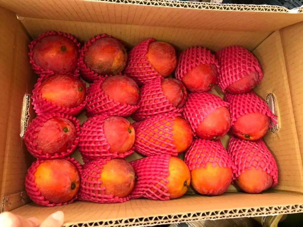 北市衛生局抽驗市售蔬果,中山區大直水果行的「愛文芒果」遭檢出1項殘留農藥不符規定。(圖/台北市政府衛生局)