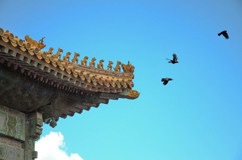 不到中國旅遊會死嗎?