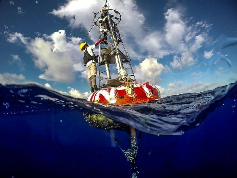 Research buoy by Institute of Oceanography, National Taiwan University (MOST FB photo)