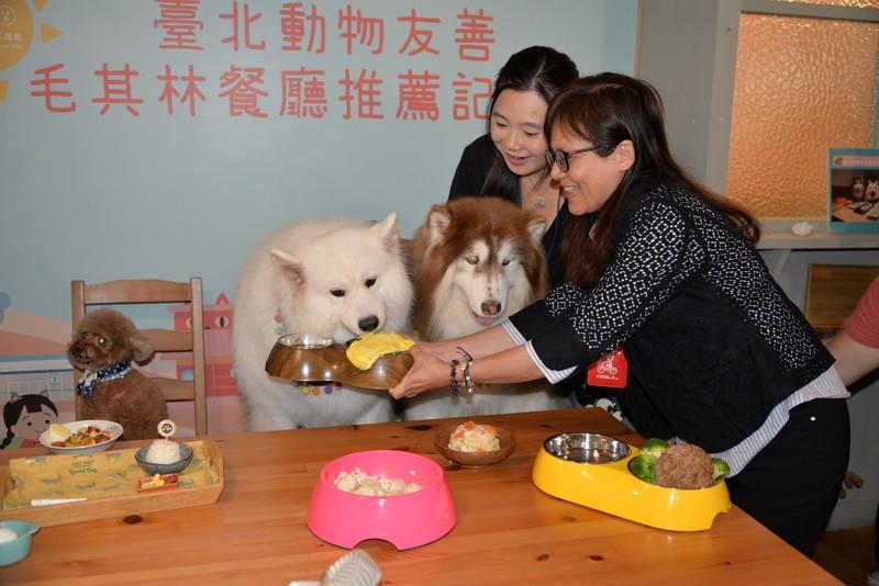 Taipei City Animal Protection Office photo