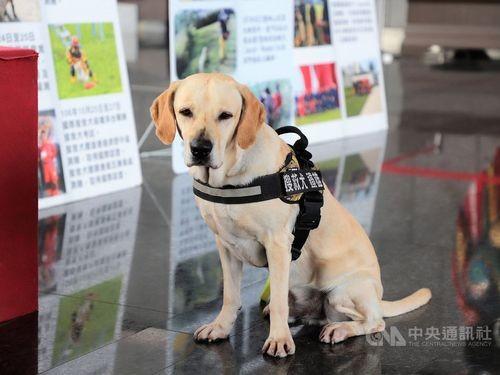 The Iron Hero (photo courtesy of Taichung City Fire Bureau).