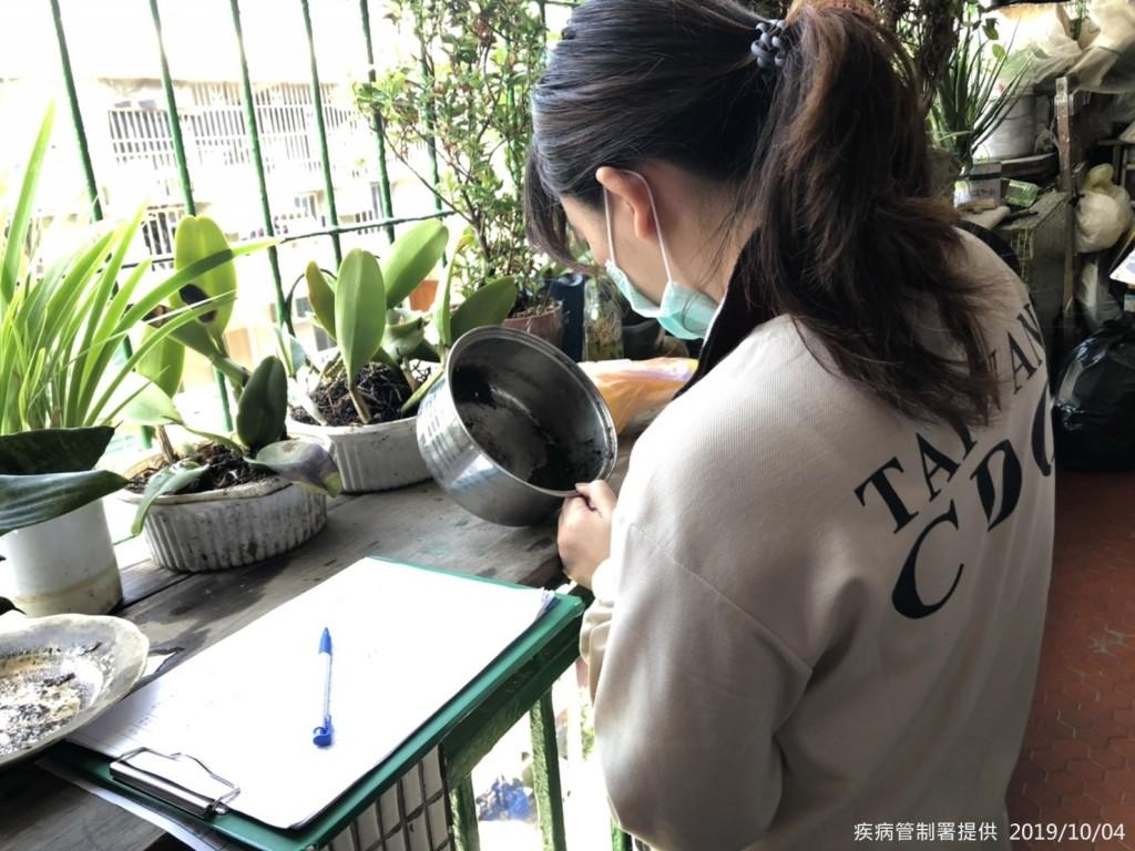 疾管署防疫人員於新北市中和區廟美里執行孳生源查核。(圖/疾管署)