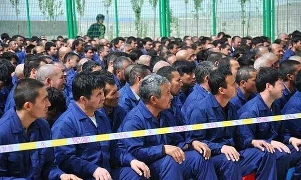 Taiwan app developer releases 'Free Uyghur' edition