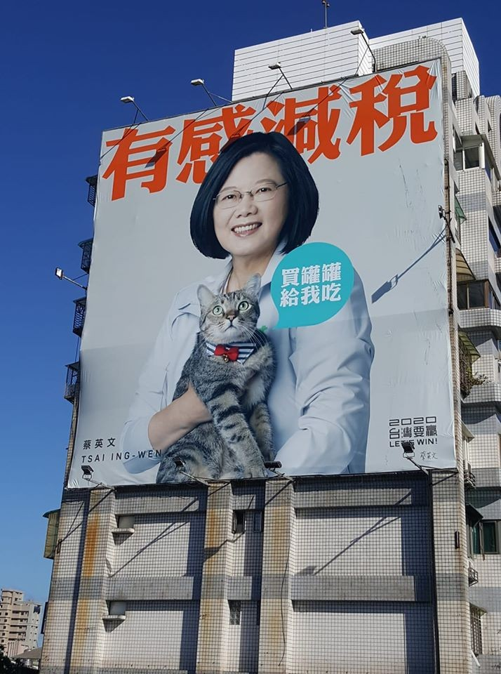 Photo of the Day: Taiwan president's purrfect running mate