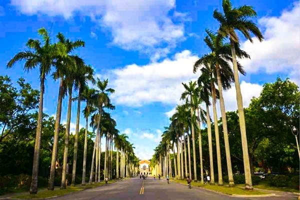 Three universities in Taiwan will shorten semesters to 15 weeks. (NTU photo)