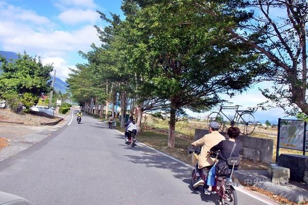Trees lining popular bike path in E Taiwan 'beheaded'