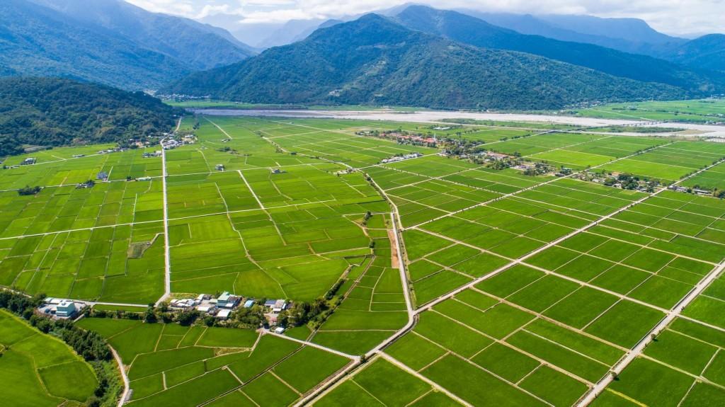 照片轉載自花東縱谷國家風景區管理處臉書
