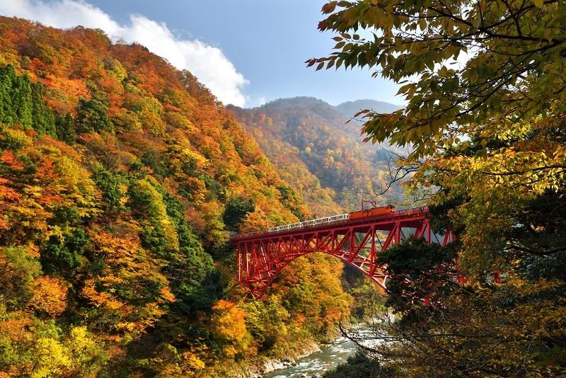 Kurobe Gorge Railway. (Forest Bureau photo)
