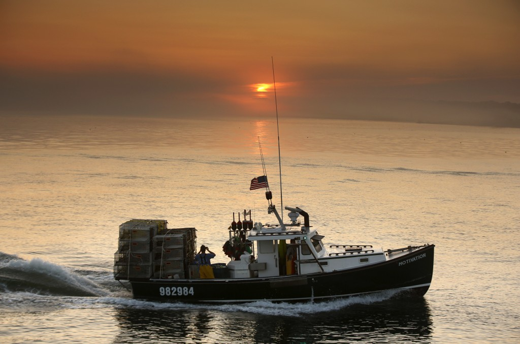 FILE - In this July 27, 2018, file photo, a sternman on a lobster fishing boat photographs the sunrise on the way out of Portland Harbor off South Por