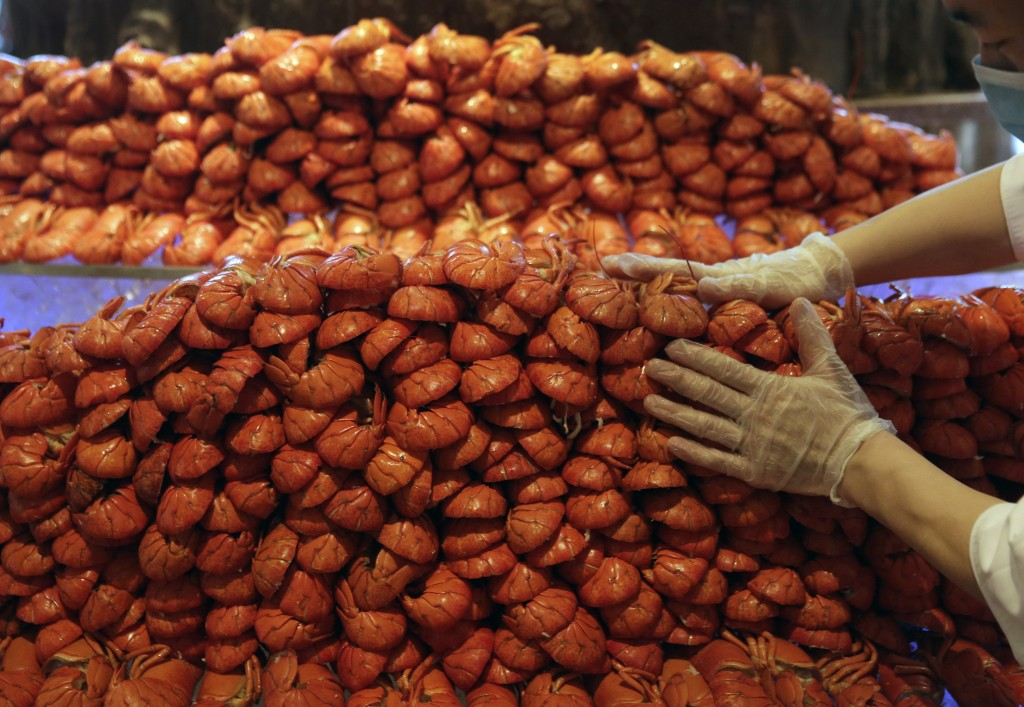 FILE - In this Feb. 9, 2015, file photo, a man touches a mountain of lobsters in Beijing. The latest round of China tariff hikes, which went into effe