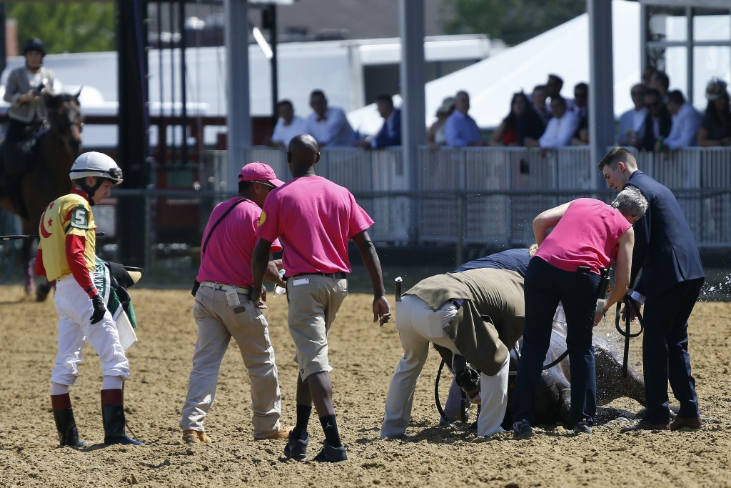 Jockey Trevor McCarthy, left, looks on as track officials tend to his ride Congrats Gal after the horse collapsed after the eighth horse race at Pimli