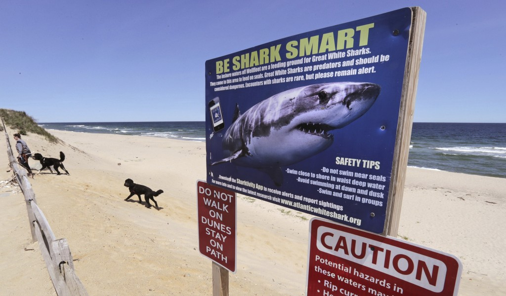 In this May, 22, 2019, photo, a woman walks with her dogs at Newcomb Hollow Beach, where a boogie boarder was bitten by a shark and later died of his