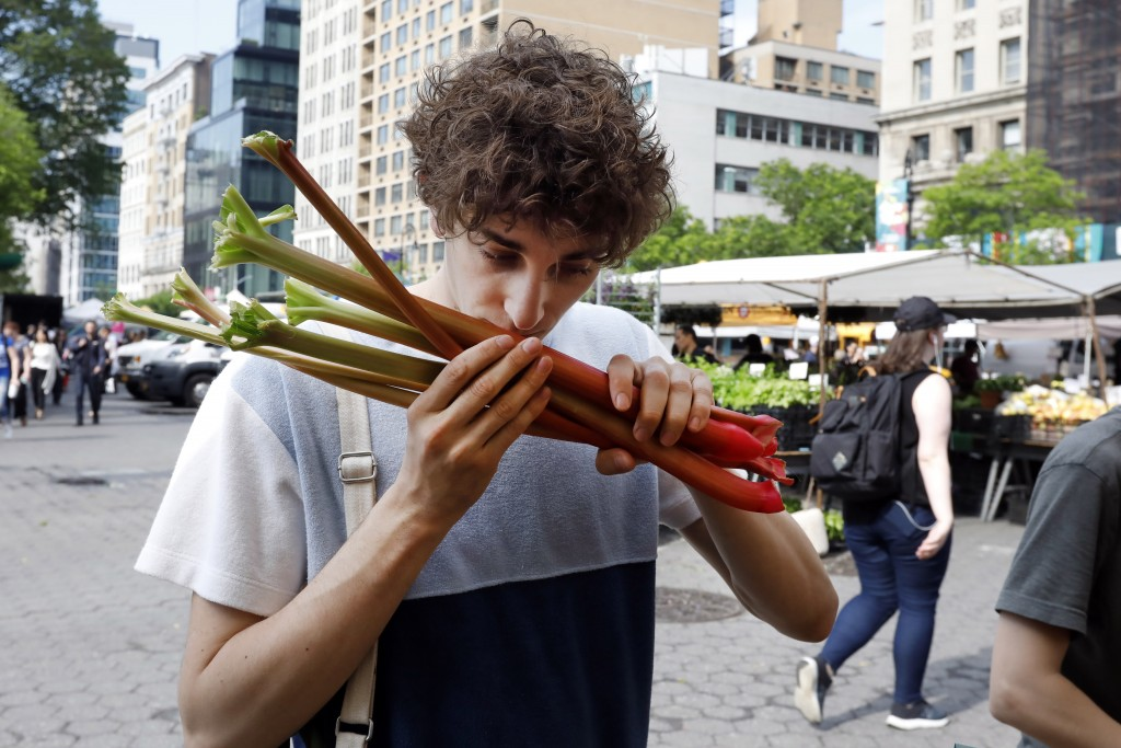 In this May 20, 2019 photo, Jonah Reider sniffs rhubarb as he shops in New York's Union Square Greenmarket for ingredients for his next dinner party. ...