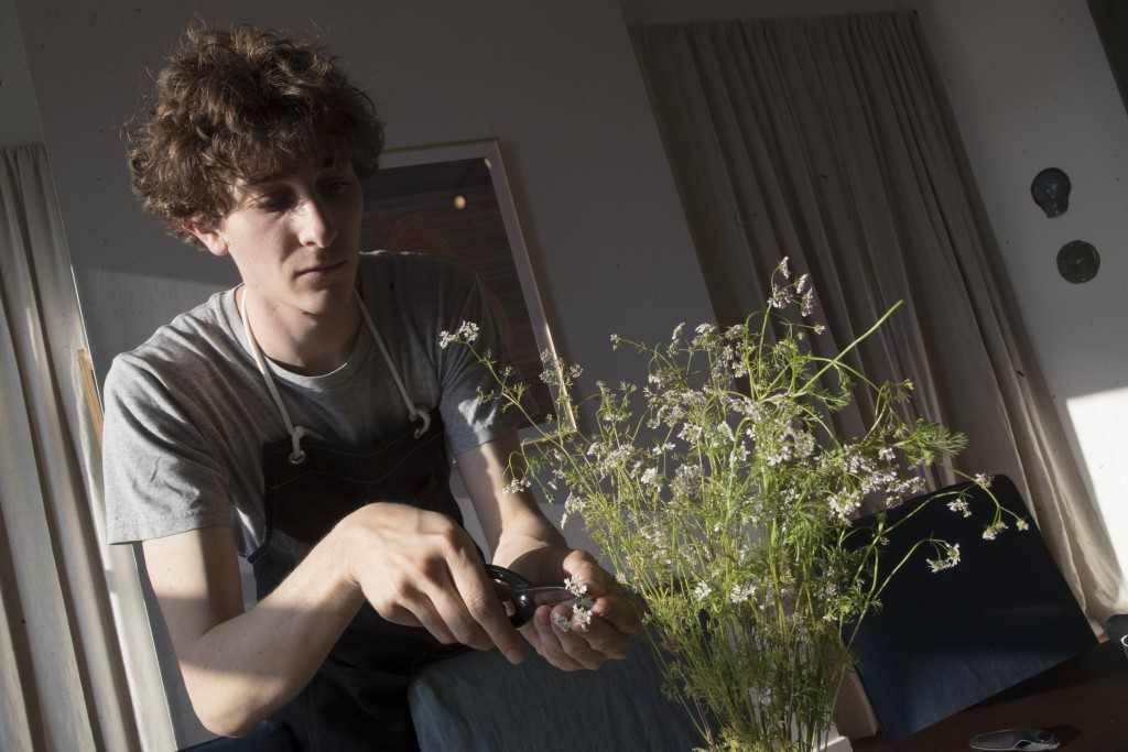 In this May 17, 2019 photo, Jonah Reider trims flowering cilantro to use in a beef tartare toast appetizer during a Pith dinner in New York. He's mana...