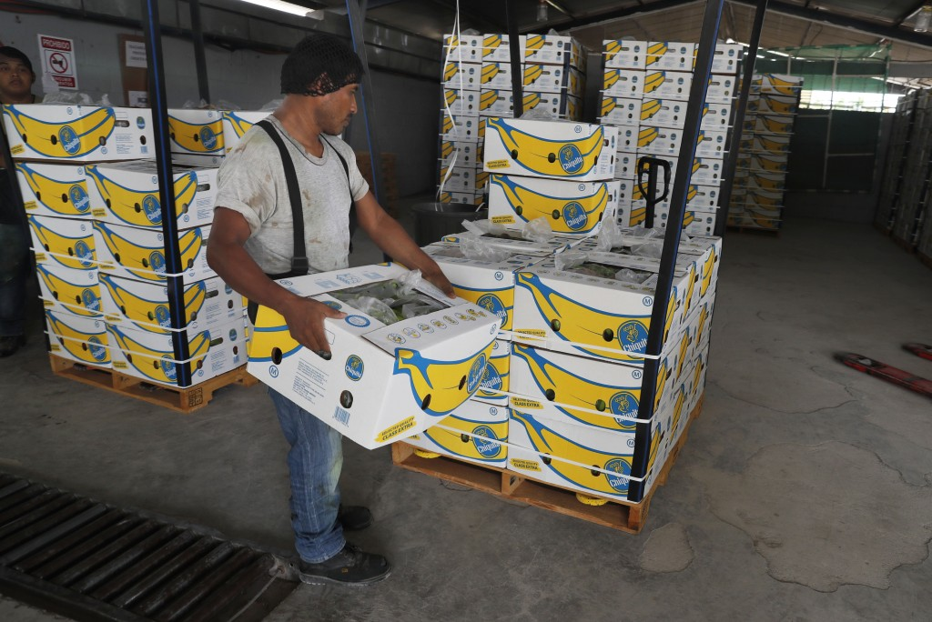 FILE - In this May 31, 2019 file photo, =a worker stacks a box of freshly harvested Chiquita bananas to be exported, at a farm in Ciudad Hidalgo, Chia...