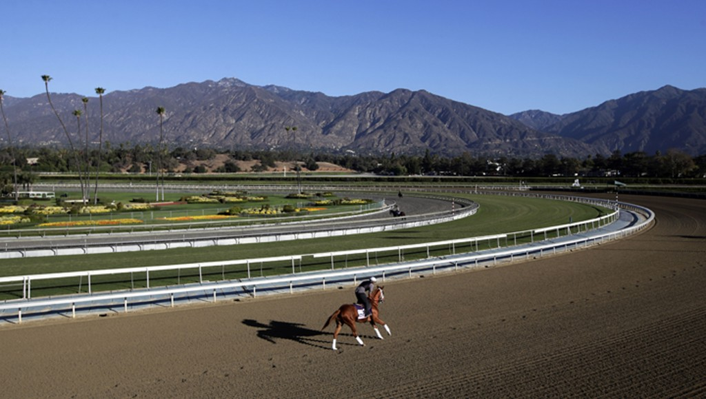 FILE - In this Oct. 30, 2013, file photo, an exercise rider takes a horse for a workout at Santa Anita Park with palm trees and the San Gabriel Mounta