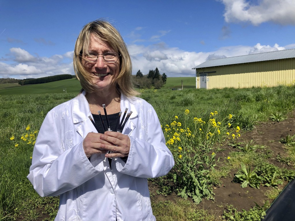ADVANCE FOR PUBLICATION ON TUESDAY, JUNE 11, AND THEREAFTER - In this April 12, 2019, photo, Cyndi Michael, a former medical marijuana grower, holds t...