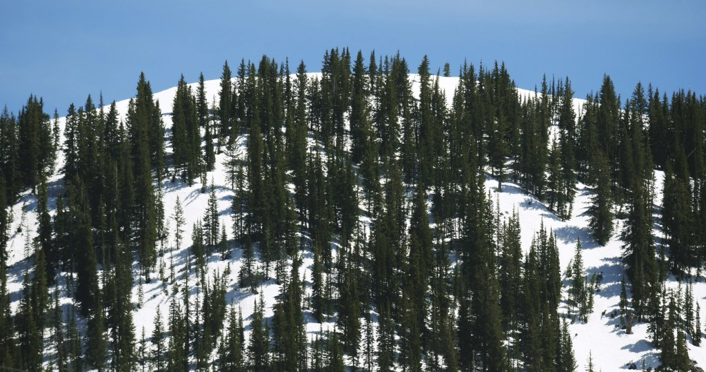 This Tuesday, June 11, 2019, photo shows snow covering a mountain in the Wasatch Range near Salt Lake City. The summer's melting snowpack is creating ...