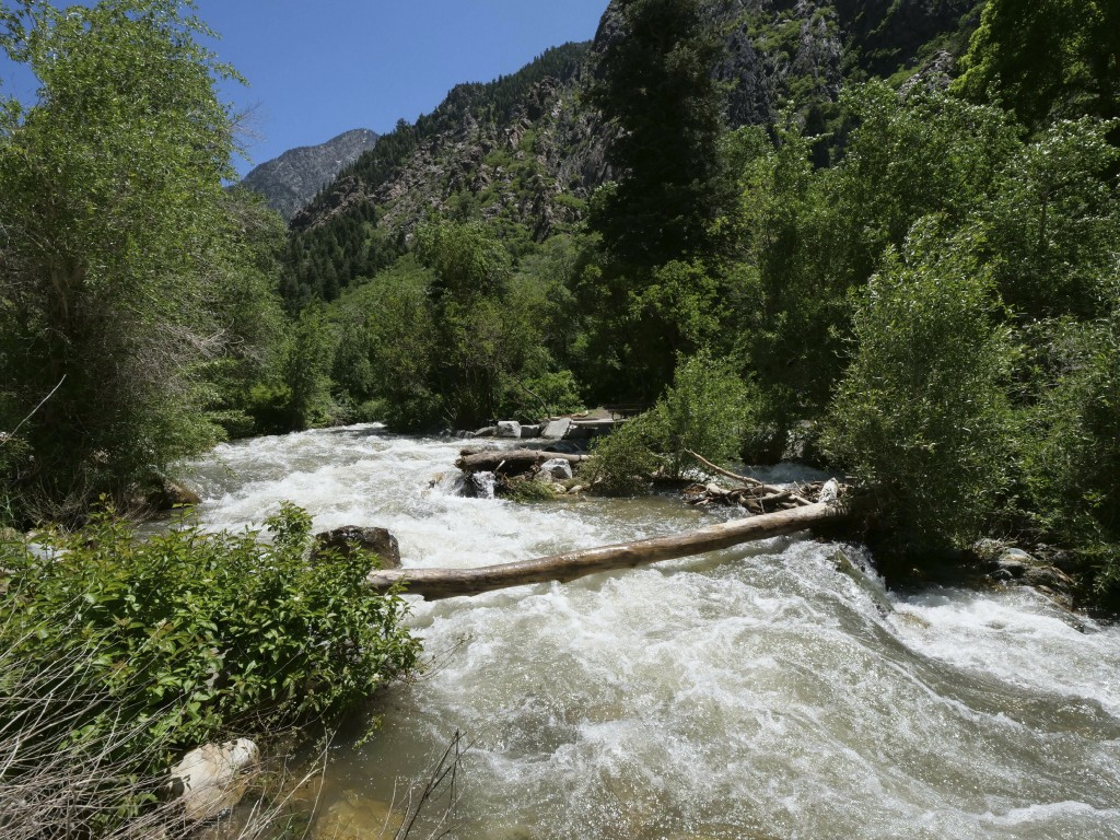 This Monday, June 10, 2019, photo shows the Big Cottonwood Creek, in the Big Cottonwood canyon, near Salt Lake City. The summer's melting snowpack is