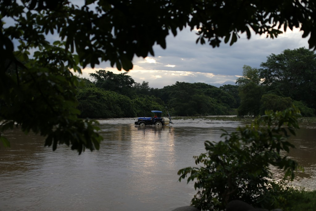 A man drives a tractor through the Suchiate river from Frontera Hidalgo, Mexico, toward Guatemala, where a handful of local farmers graze their cattle