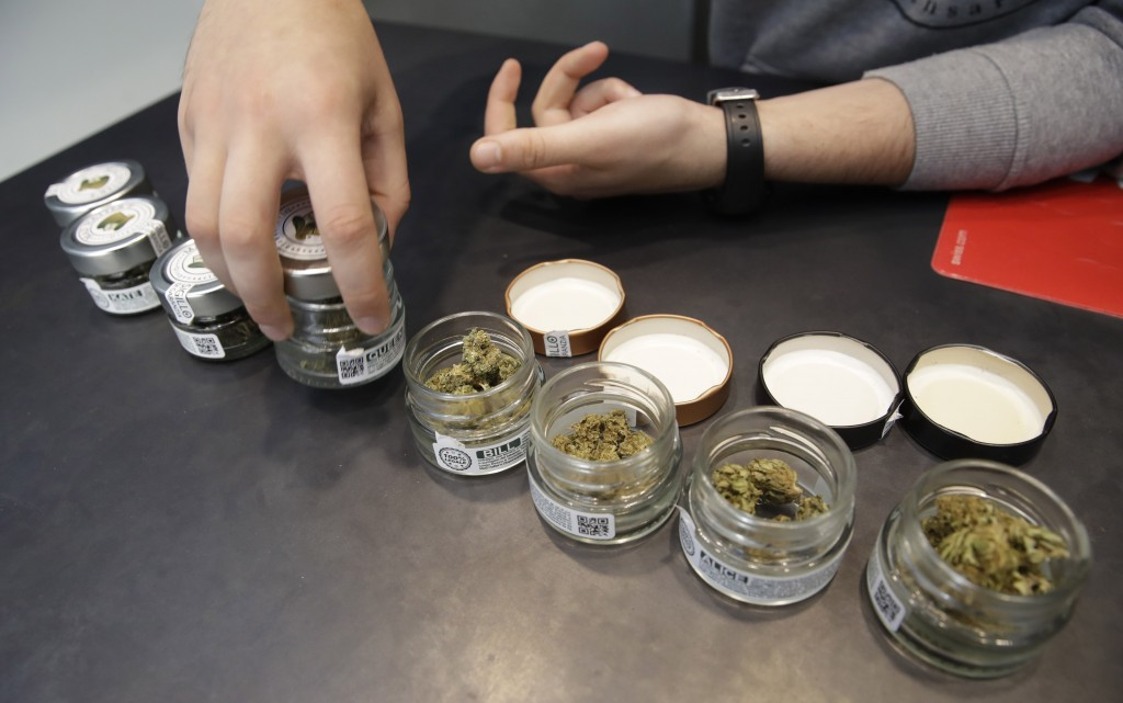 In this  Thursday, June 6, 2019 a shop assistant opens jars of cannabis buds at a cannabis light store in Milan, Italy. Interior Minister Matteo Salvi...