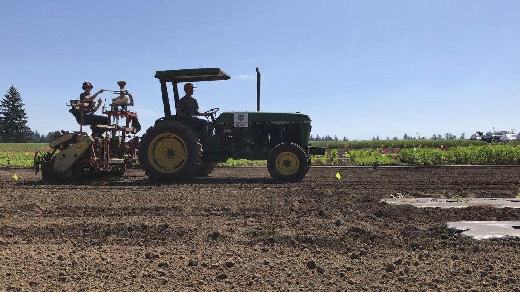In this Thursday, June 13, 2019, photo, a team of Oregon State University employees spreads hemp seeds in a field using a tractor at a research statio