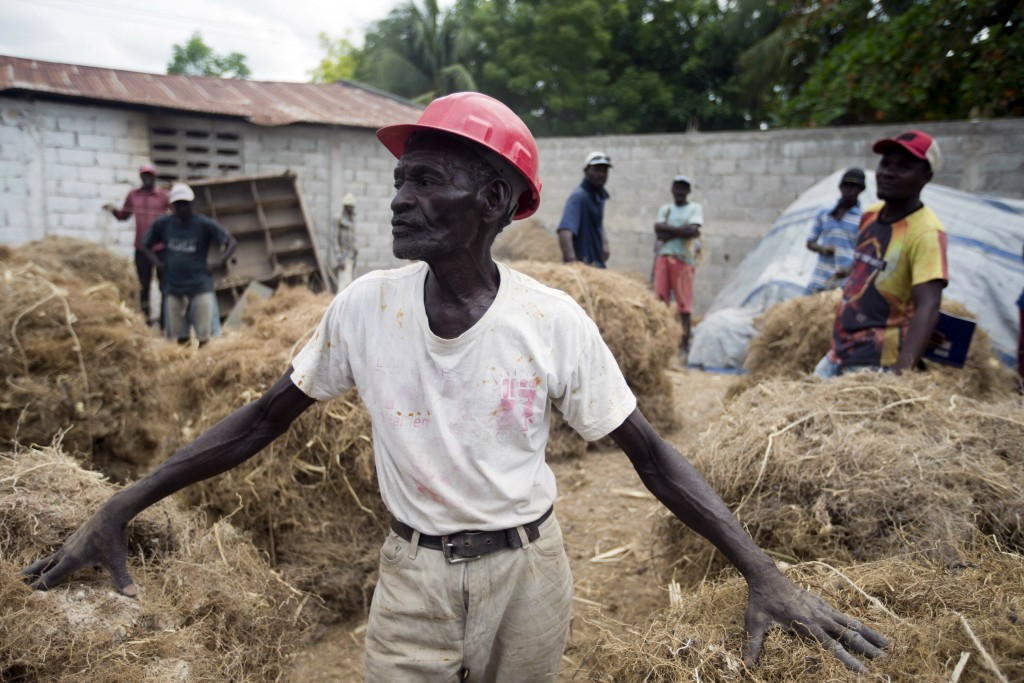 In this May 27, 2019 photo, Clerme Elmacide stands amid bales of vetiver roots at a plant in Les Cayes, Haiti. In the poorest country of the Western h