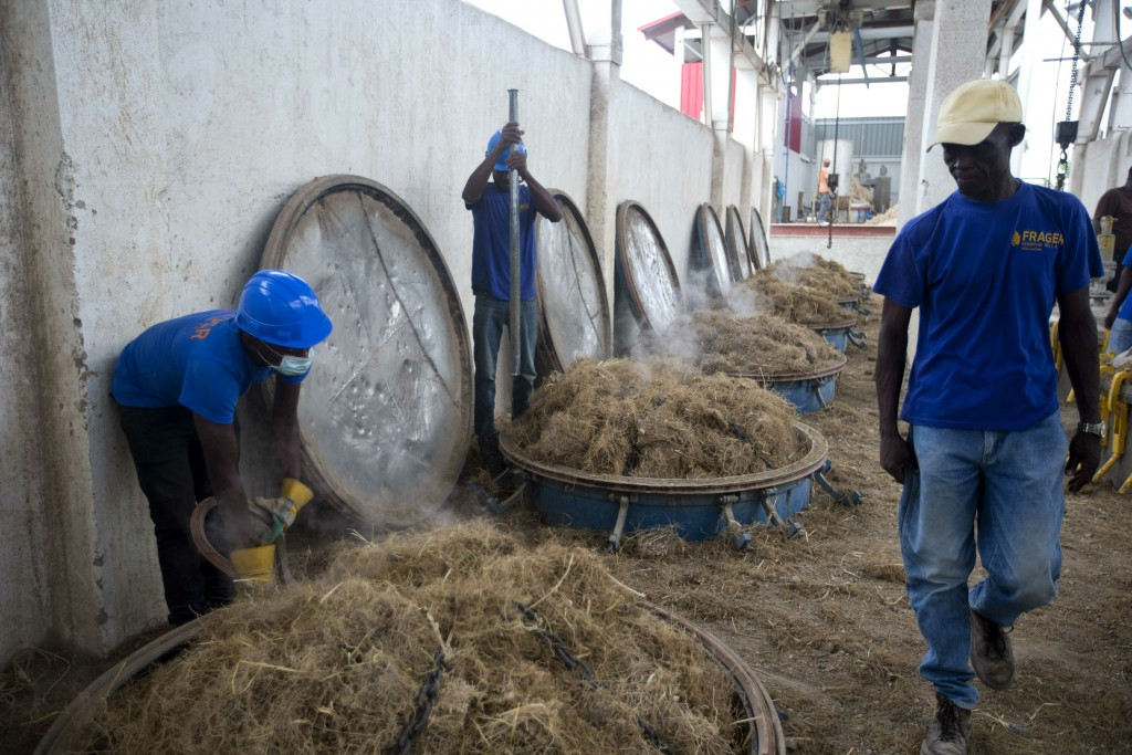In this May 27, 2019 photo, workers load vetiver roots into vats to be processed at the Frager's factory in Les Cayes, Haiti. Before vetiver oil can b