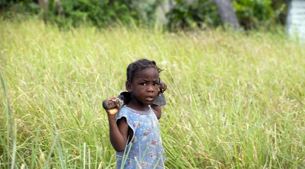 In this May 27, 2019 photo, a girl with a machete eyes the camera as she walks in a field of vetiver in Les Cayes, Haiti. Haiti produces more than 70