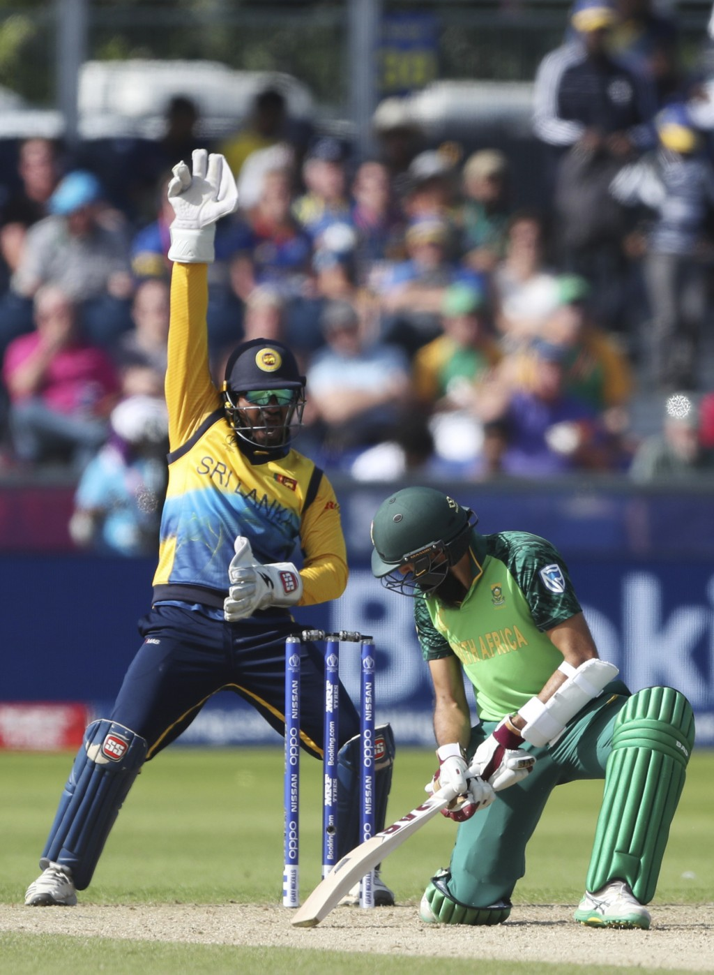 Sri Lanka's wicketkeeper Kusal Perera, left, appeals unsuccessfully for LBW against South Africa's batsman Hashim Amla during the Cricket World Cup ma...