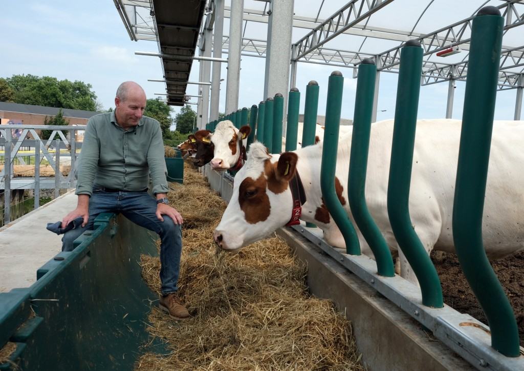 In this photo taken Monday, June 24, 2019, Peter van Wingerden poses with his herd aboard a futuristic three-storey floating dairy farm moored in Rott...