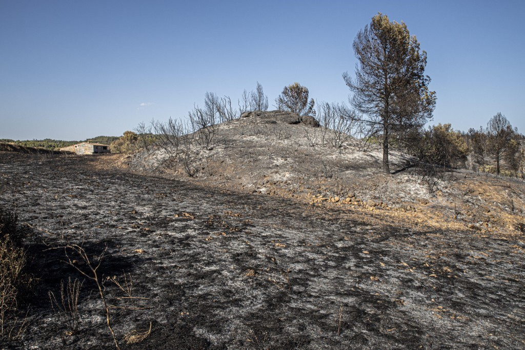 A building stands on burned terrain after a fire in La Palma d'Ebre, Spain, Friday June 28, 2019. A major wildfire in northeastern Spain that began in...