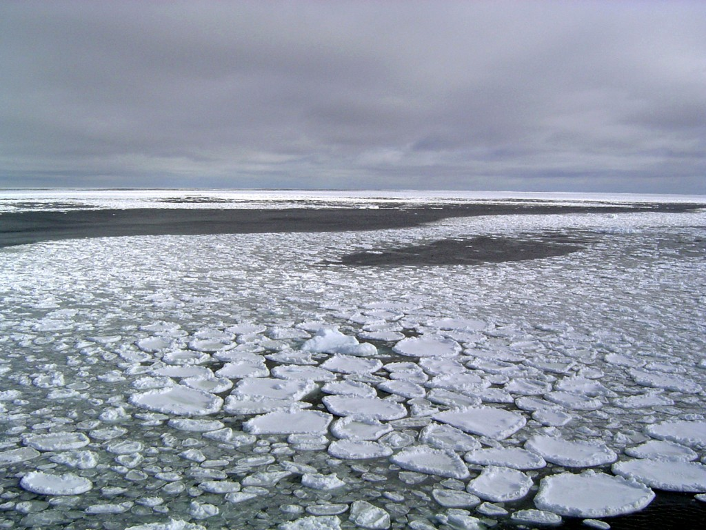 This January 2017 photo provided by Ted Scambos shows sea ice on the ocean surrounding Antarctica during an expedition to the Ross Sea. Ice in the oce...