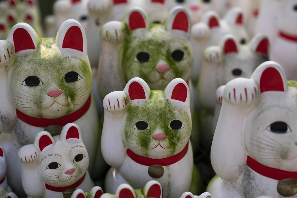 In this June 25, 2019, photo, stained beckoning cat figurines are seen at Gotokuji Temple in Tokyo. According to a centuries-old legend provided by th...