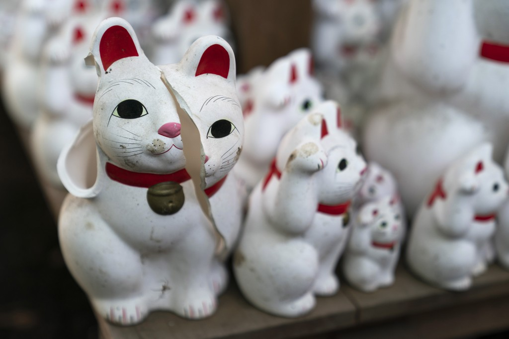 In this June 25, 2019, photo, a broken beckoning cat figurine sits on a shelf at Gotokuji Temple in Tokyo. According to a centuries-old legend provide...