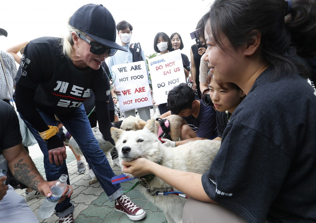 American actress Kim Basinger, left, watches a pet dog during a rally to oppose eating dog meat in front of the National Assembly in Seoul, South Kore