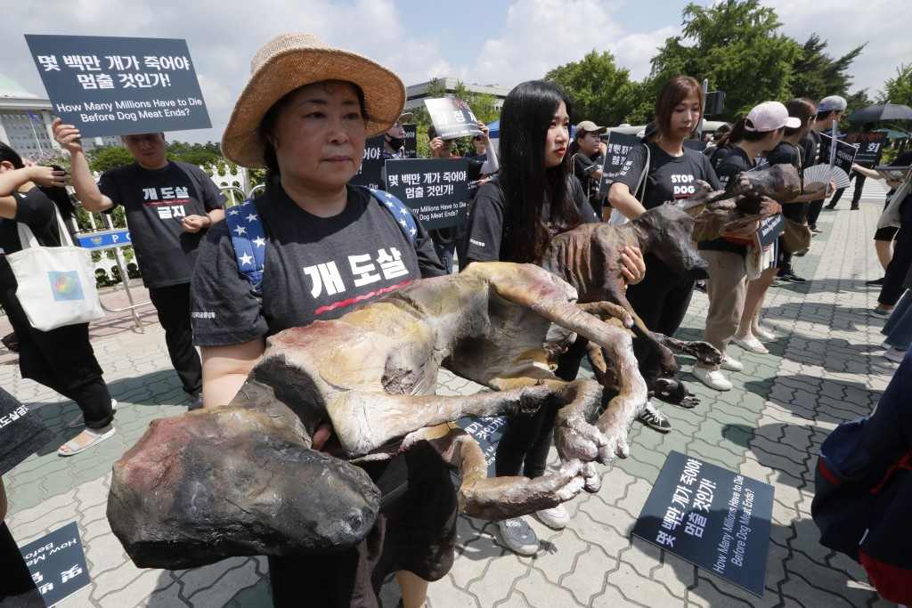 Members of the Last Chance for Animals hold models of slaughtered dogs during a rally to oppose eating dog meat in front of the National Assembly in S