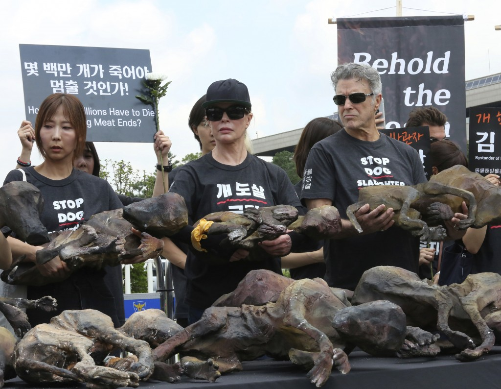 American actress Kim Basinger, center, holds a model of a slaughtered dog during a rally to oppose eating dog meat in front of the National Assembly i