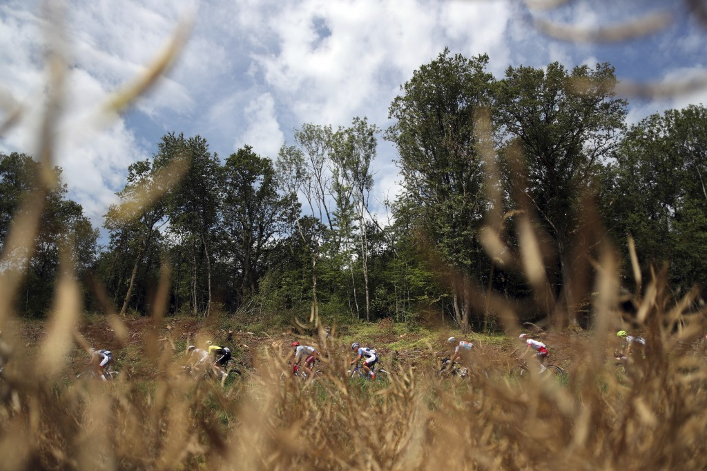 Riders pass by a corn field during the seventh sta...