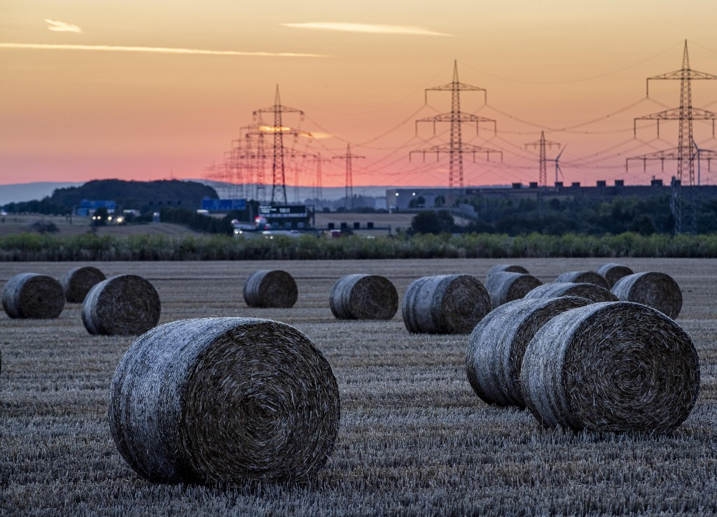 Straw bales lie on a field in Frankfurt, Germany, before sunrise on Wednesday, July 24, 2019. (AP Photo/Michael Probst)