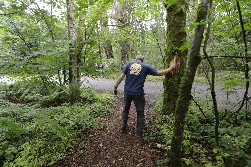 In this Friday, Aug. 2, 2019, photo Wayne Elson reaches out to a dead tree that he says he needs to cut down, as it could fall and block the road in a